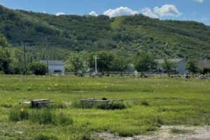 "In Canada trovati i resti di oltre 700 persone in una ex scuola cattolica ""per indigeni"""