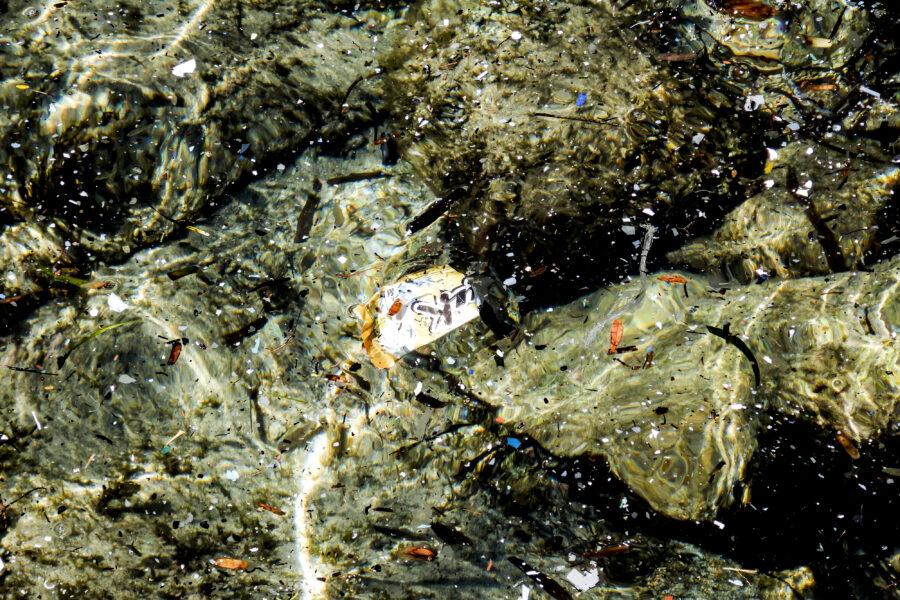 SARDEGNA INQUINAMENTO DA MICROPLASTICHE NEL MARE PLASTICA PLASTICHE RIFIUTI RIFIUTO SVERSAMENTO SVERSAMENTI MASCHERINA MASCHERINE ABBANDONATA ABBANDONATE