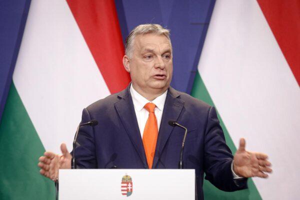 """Nell'Ungheria di Orban messi al bando Harry Potter e Bridget Jones: gli effetti della legge contro la """"promozione dell'omosessualità"""" tra i minori"""