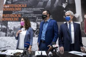 Referendum sulla giustizia, un atto politico