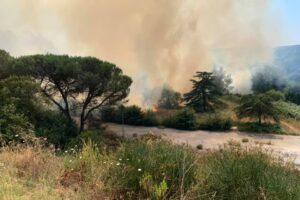 Incendi a Roma e provincia: 40 interventi dei Vigili de Fuoco solo ieri, 1500 nel mese di luglio