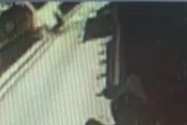 Il video dell'incidente di Capri, così l'autobus è precipitato sul lido di Marina Grande