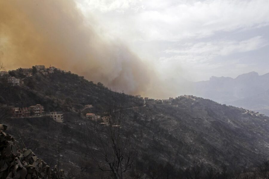Brucia il Mediterraneo, 42 vittime degli incendi in Algeria: un morto anche in Calabria