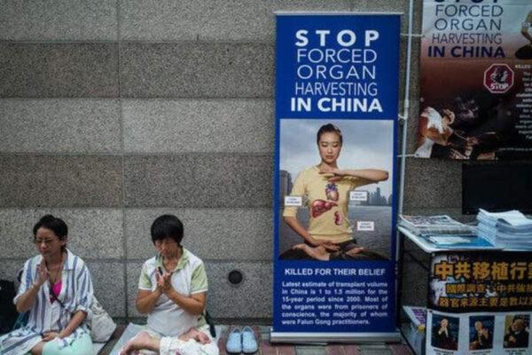 Organi strappati ai detenuti, l'orrore made in Cina nelle galere