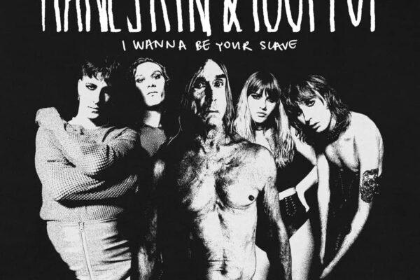 """Chi è Iggy Pop, il mito del rock che ha collaborato con i Maneskin in """"I wanna be your slave"""""""