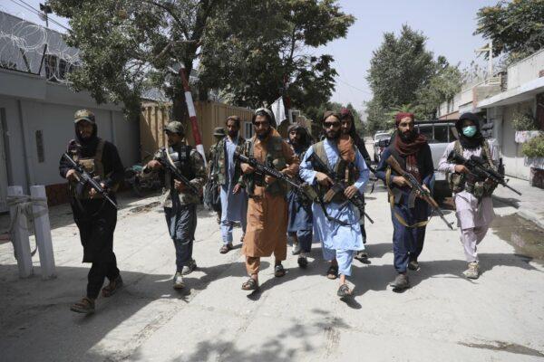 Afghanistan, i talebani sparano e la Nato batte un colpo: ma rastrellamenti ed esecuzioni brutali continuano