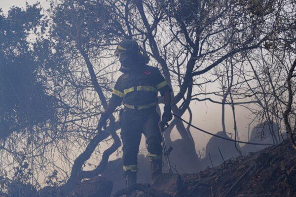 Il fuoco che divora i boschi è un affare di città