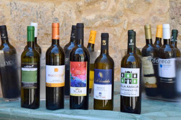 Belice capitale del vino, nella valle ferita ora si libano i calici: benvenuti a Salaparuta