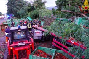 Scoppia pneumatico sul raccordo, il tir sbanda, abbatte alberi e perde carico: morto il camionista