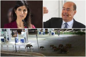 Emergenza cinghiali, Raggi scarica le colpe su Zingaretti: esposto in Procura contro la Regione