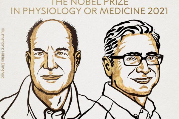 Premio Nobel per la Medicina a David Julius e Ardem Patapoutian: hanno scoperto i recettori della temperatura e del tatto
